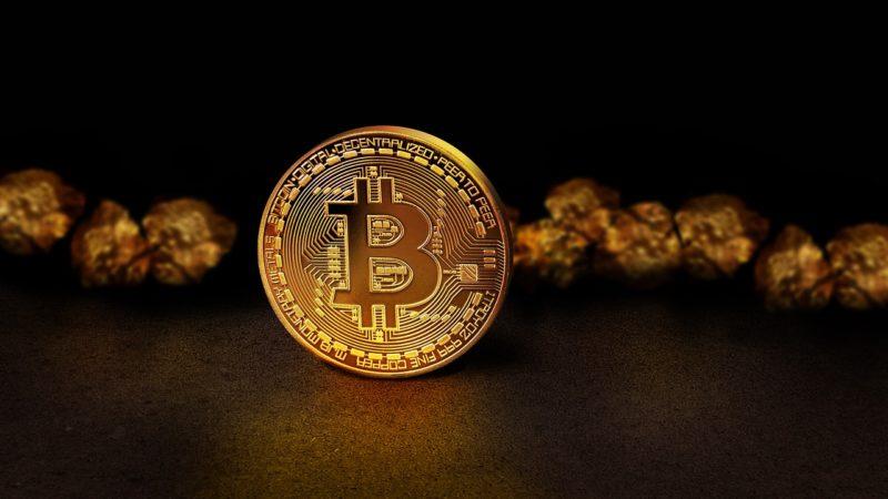 Il Bitcoin è attualmente l'unica criptovaluta forte del mercato