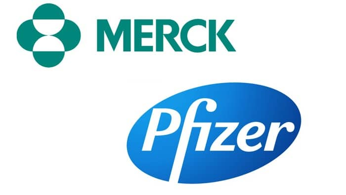 Merck alza le prospettive di profitto, Pfizer non è ancora pronta sul vaccino