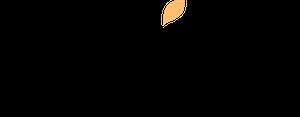 wix.com azioni titolo previsioni quotazioni dividendi grafico