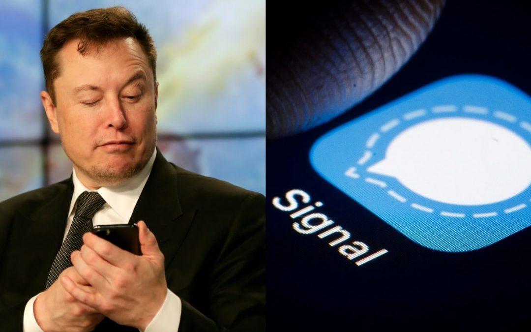 Azioni Signal Advance in aumento del 5.675% dopo un tweet di Elon Musk