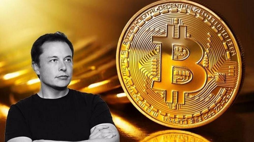 Bitcoin di nuovo in rally, Elon Musk riaccende il mercato crypto